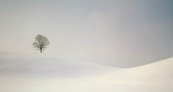 peaceful_season